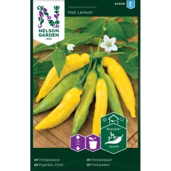 Chilipeppar 'Hot Lemon' frö 1-pack