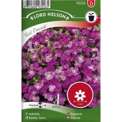 Aubrietia 'Red Cascade' frö1-pack (slut för året)